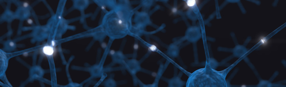 Large neural
