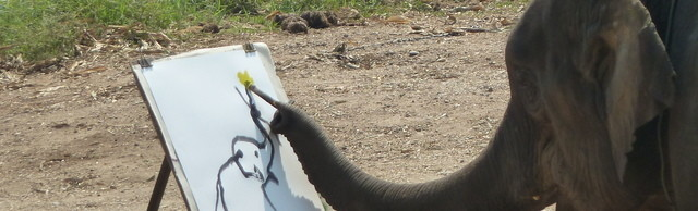 Medium elephant show in chiang mai p1110469